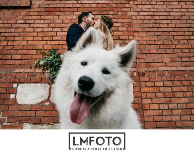 lmfoto